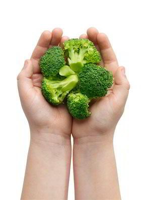Brócoli, zanahoria, berenjena, calabacín, cebolla o tomate 150 gramos