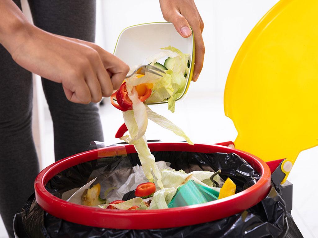 Persona tirando comida a la basura