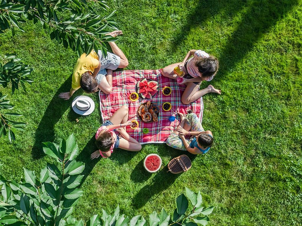 Familia en un picnic