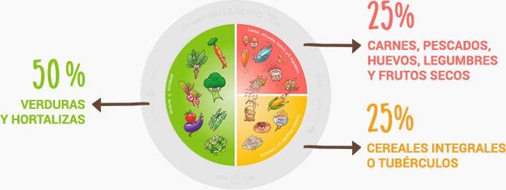 Porcentajes para alimentación equilibrada en comidas y cenas